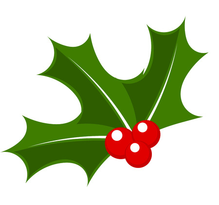 Holly berry. Christmas symbol vector illustration
