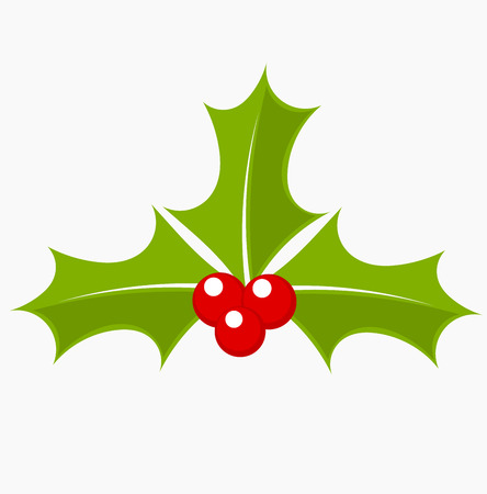 aquifolium: Holly berry icon. Christmas symbol vector illustration Illustration
