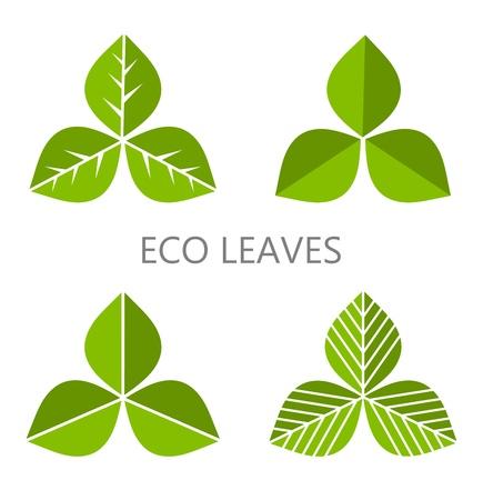 Set of green leaves. Vector illustration