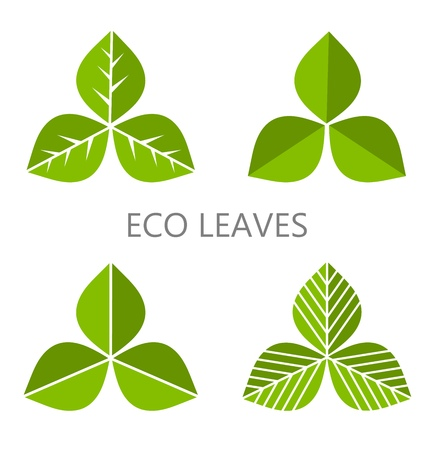 three leaves: Set of green leaves. Vector illustration