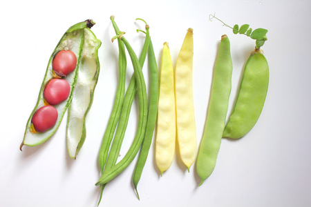 Variety of fresh organic legumes : green and yellow beans, pea, broad bean photo