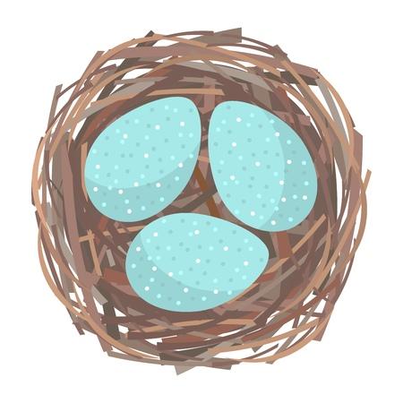 nido de pajaros: Los huevos en el interior del nido de pájaro. Ilustración vectorial