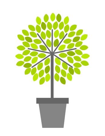Tree in pot. Vector illustration Vector