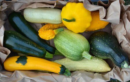 autumn colour: Different kinds of summer squash