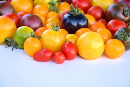 tomate: Heirloom colorful tomatoes from organic garden