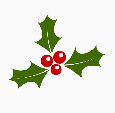 Christmas holly. Vector illustration Vettoriali