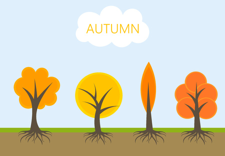 root: Autumn trees in nature. Vector illustration