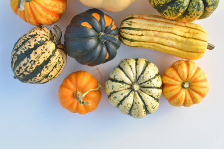 varieties: Varieties of pumpkins and squashes