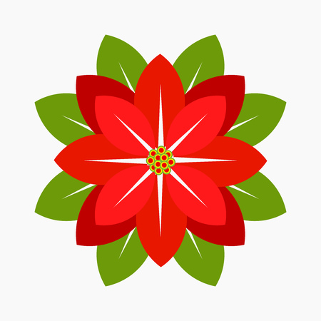 Poinsettia flower, symbol of Christmas. Vector illustration Illustration