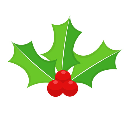 aquifolium: Holly berry Christmas icon. Vector illustration Illustration