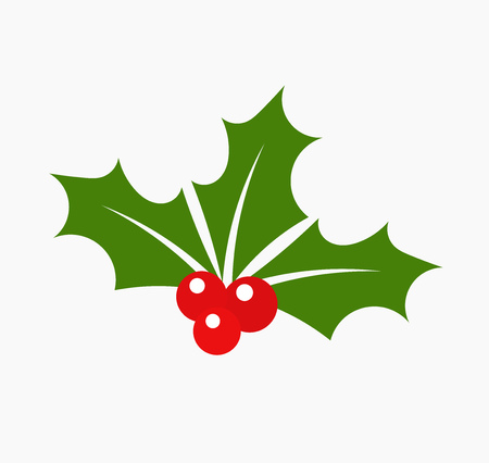 christmas greeting: Christmas holly berry leaves. Vector illustration