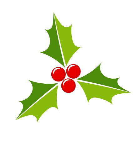 aquifolium: Holly berry Christmas icon. Vector illustration Illustration
