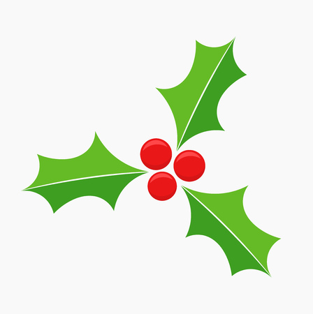 holly leaf: Holly berry Christmas symbol. Vector illustration