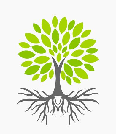 뿌리를 가진 에코 트리. 삽화