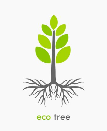 crecimiento planta: árbol de Eco con las raíces. ilustración vectorial