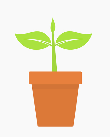 plant pot: Plant growing in pot Illustration