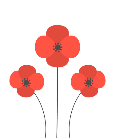 papaver: Red poppies flowers. Vector illustration