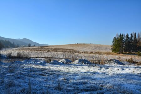 zakopane: Winter mountain landscape in Zakopane, Poland