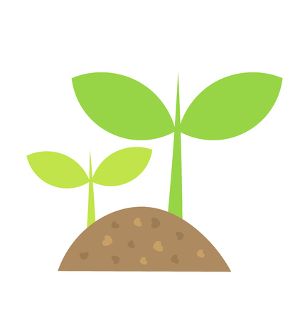 Two little plants growing in soil. Vector illustration