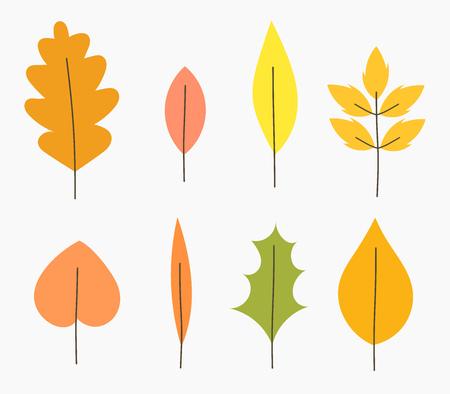 plants species: Autumn leaves illustrazione