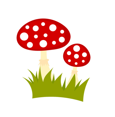 a toadstool: Toadstool mushrooms isolated on white background. Vector illustration