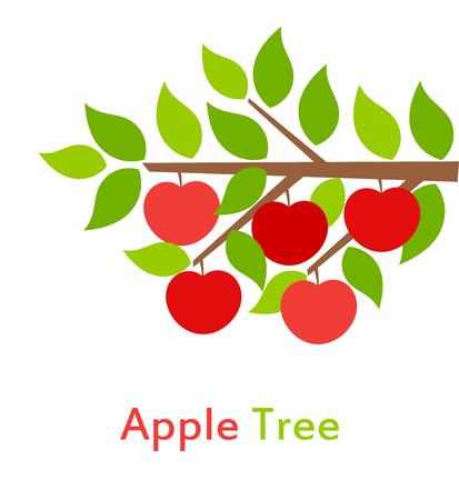 tree branch: Apple tree branch. Vector illustration Illustration