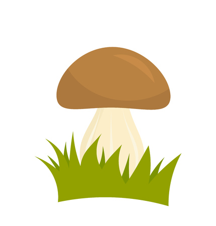 uncultivated: Porcini mushroom in grass. Vector illustration