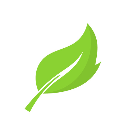 harmony nature: Green leaf. Vector illustration Illustration