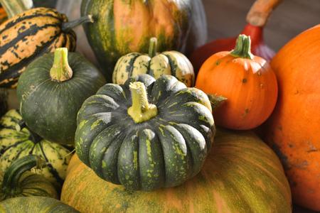 varieties: Winter squashes and pumpkins heirloom varieties group Stock Photo