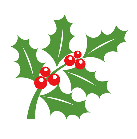 Holly berry branch - Christmas symbol illustration