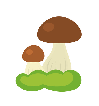 uncultivated: Forest mushroom growing in moss. Vector illustration