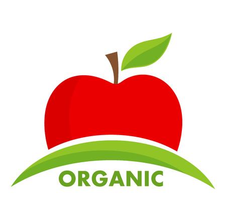 fruit stem: Organic apple logo or icon. Vector illustration