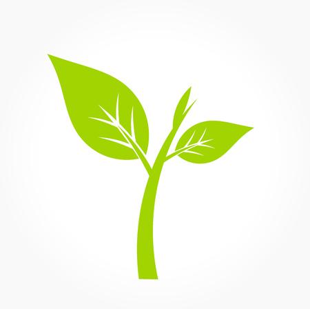 Little green plant icon. Vector illustration Illustration