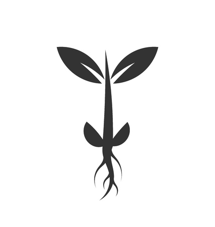 Little plant sprout icon growing from seed. Vector illustration Illustration