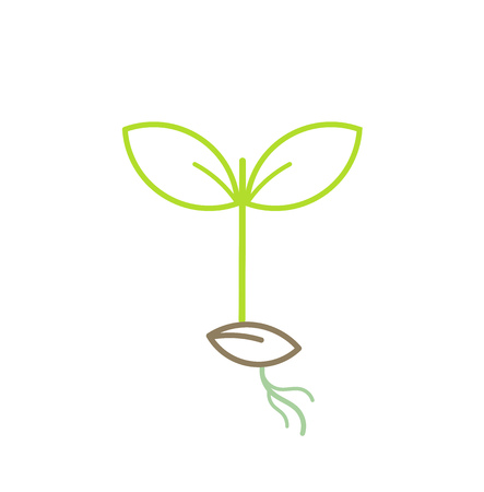 Green plant seedling line icon. Vector illustration