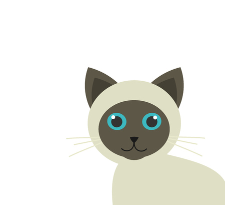 grey cat: Cute siamese kitten. Vector illustration