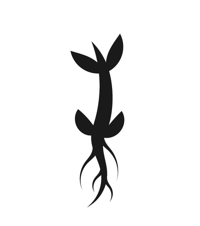 the sprouting: Little plant sprout icon growing from seed. Vector illustration Illustration