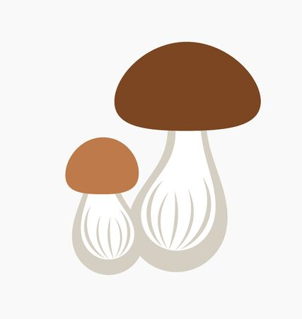 cep: Wild porcini mushroom icon. Vector illustration