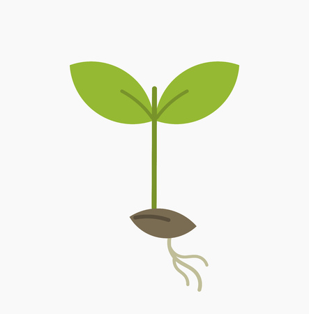 germinate: Little plant seedling icon. Vector illustration Illustration