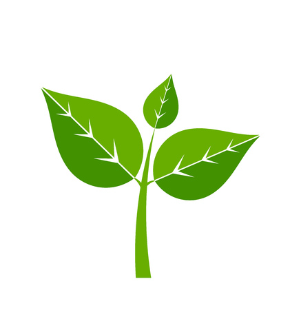 Green plant icon. Vector illustration