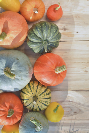 Pumpkins and squashes on wooden background Stock Photo