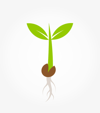 Little green plant seedling germinating from seed icon. Vector illustration