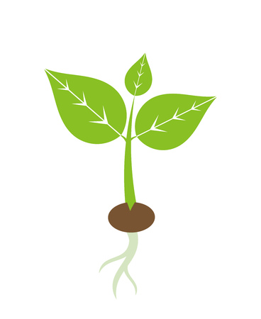 Spring plant seedling icon. Vector illustration