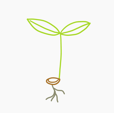 Doodle drawn seedling plant icon. Vector illustration Illustration
