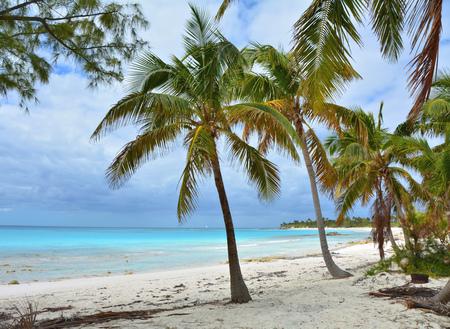 Paradise beach on Eleuthera island, Bahamas