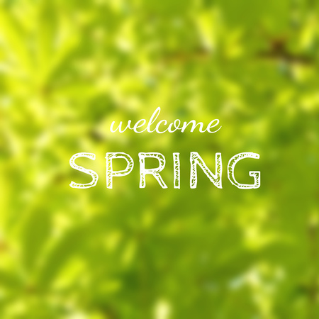 Welcome spring, green blurred tree foliage background
