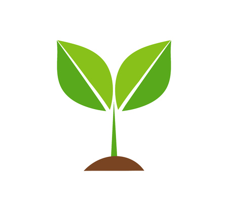 Spring plant icon Vector illustration  isolated on plain background.