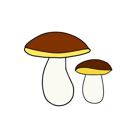 Wild forest mushroom icon. Vector illustration Illustration