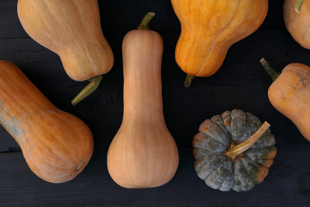 Butternut and moschata squashes varieties on black wooden boards background