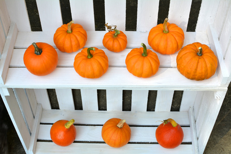 Autumn pumpkins decoration on white wooden shelfs boxes Zdjęcie Seryjne